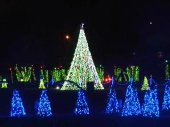 christmas lights drive through holiday
