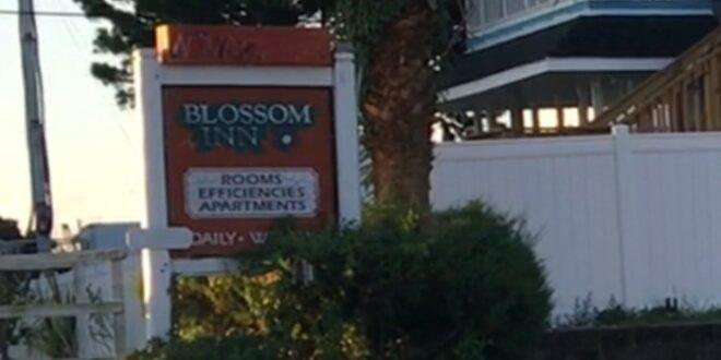 Blossom Inn