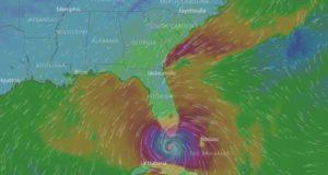Irma FL
