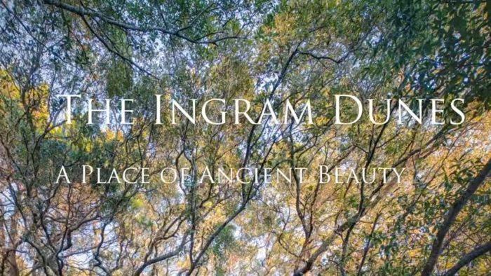 Ingram Dunes