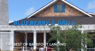 BlueBerry's Grill