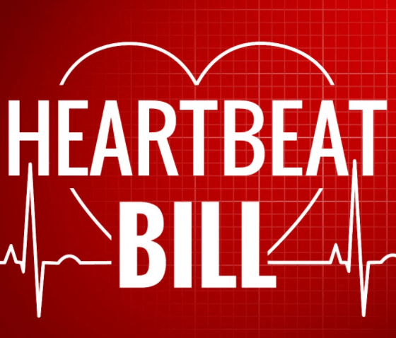 Heartbeat Bill